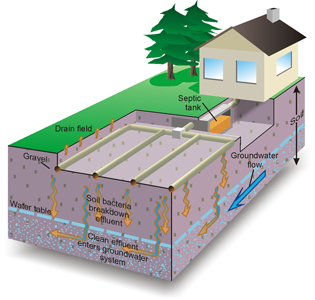 Take Care Of Your Septic System Atlanta Action Septic